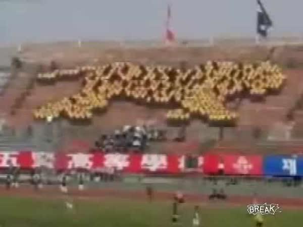 LCD dav - fanoušci Jižní Korea