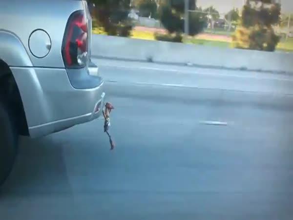 Drž se, Woody!