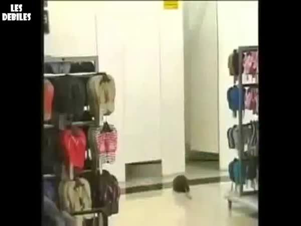 Nachytávka - krysa v kabince