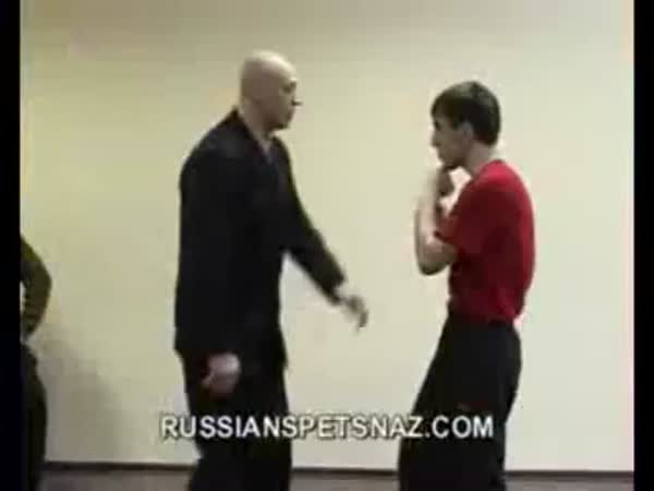 Systema - Ruské bojové umění