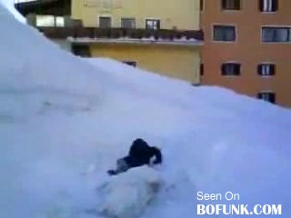 Idiot - Chytání sněhové koule