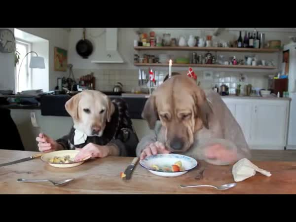 Dva psi večeří
