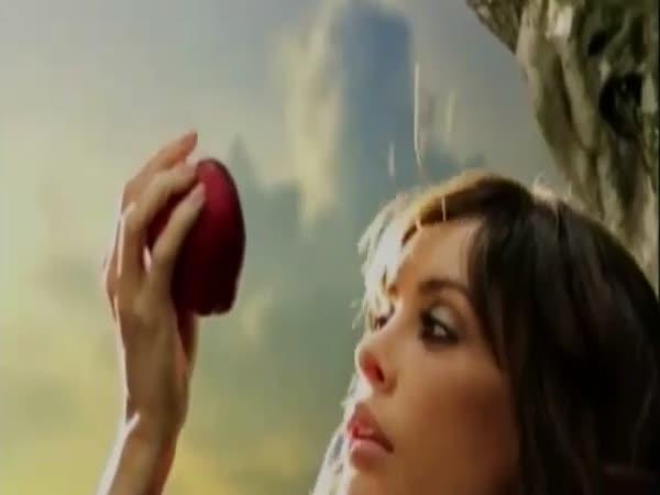 Zakázané ovoce