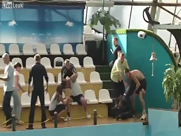 Bitka v delfináriu