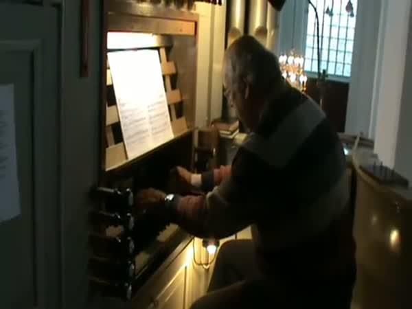 Borec - Stařík a varhany