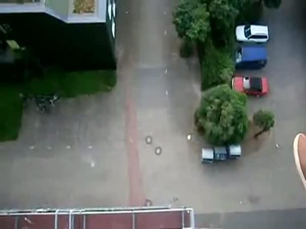 Vlaštovka - obrovská náhoda