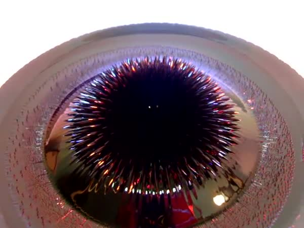 Magnetická tekutina