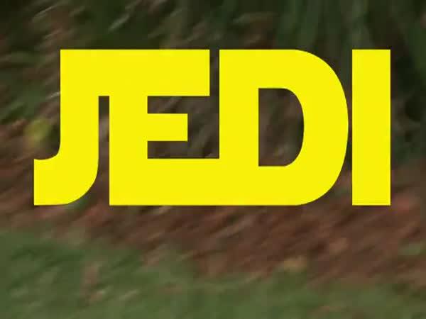 Veverka Jedi