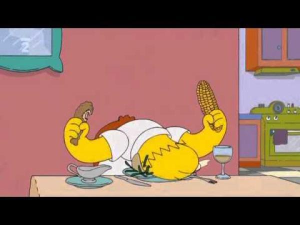Simpsonovi - Homer a moucha