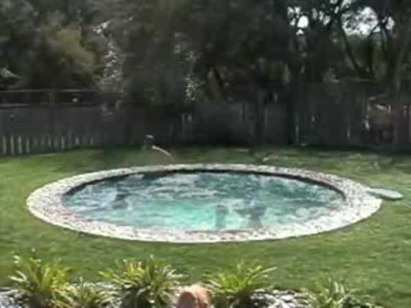 Tajný bazén