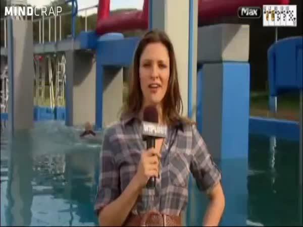 Wipeout - To nejlepší za rok 2011