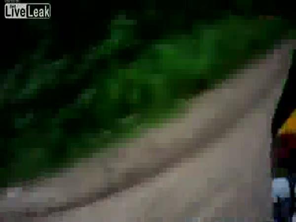 Těsné minutí v lese