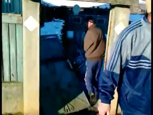Šílené sáňkování v Rumunsku