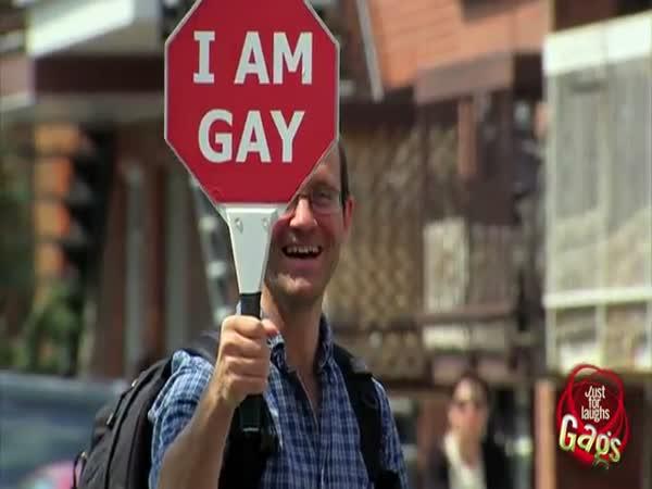 Nachytávka - Gay