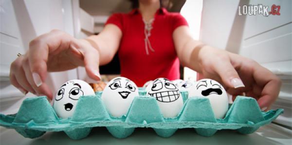 OBRÁZKY - Život vajíček