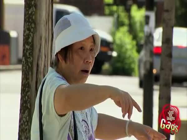 Nachytávka - Pouliční uklízeč