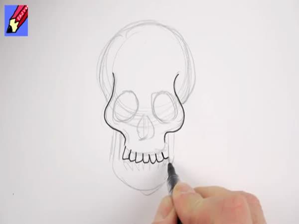 Jak nakreslit - Lebka