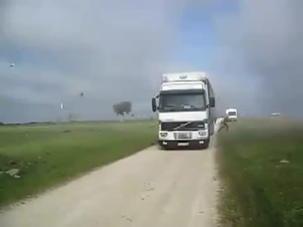 Co se vejde do jediného kamionu