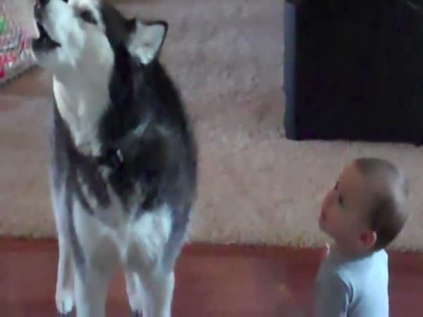 Pes imituje dítě