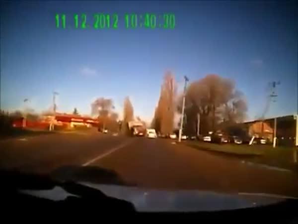 Nehoda - Krávy na silnici