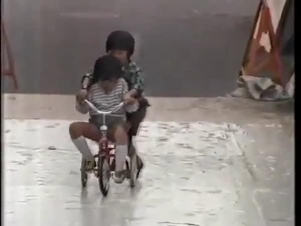 Nachytávka - lepící chodník