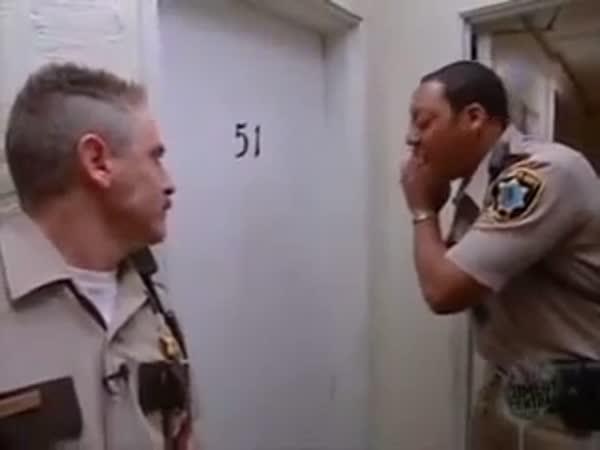 Policejní fail