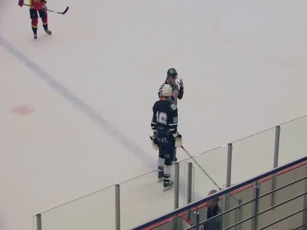 Hokej - rozhodčí vs. hráč