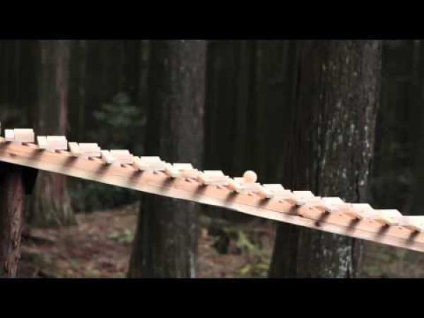 Lesní xylofón hraje Bacha