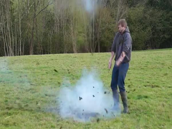Výbuch kravského lejna