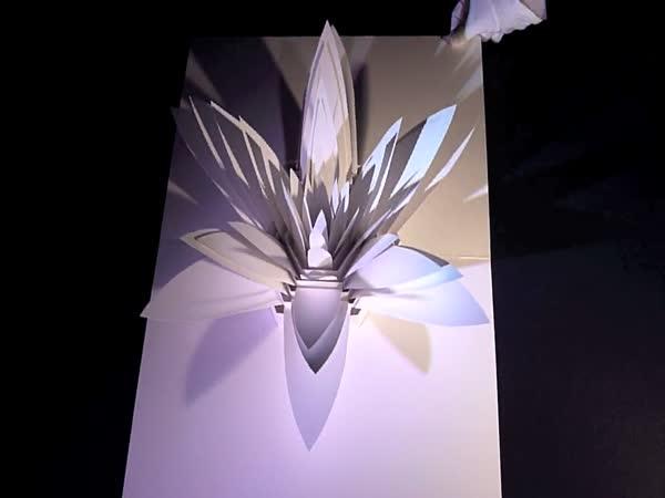 Papírová dokonalost