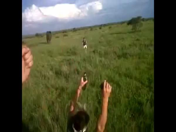 Muž posílen alkoholem zastrašil slona
