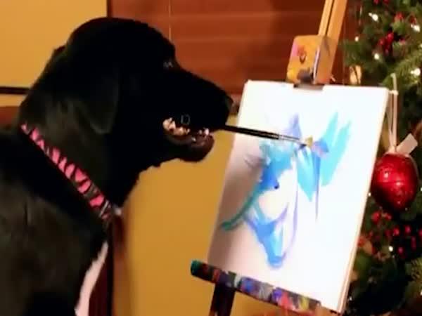 Fenka maluje obrazy pro charitu