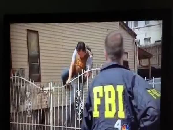 Profesionálové v FBI
