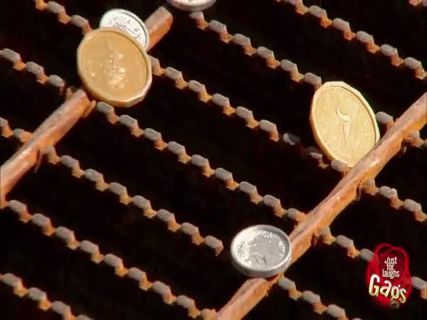 Nachytávka - Kýbl peněz v kanálu