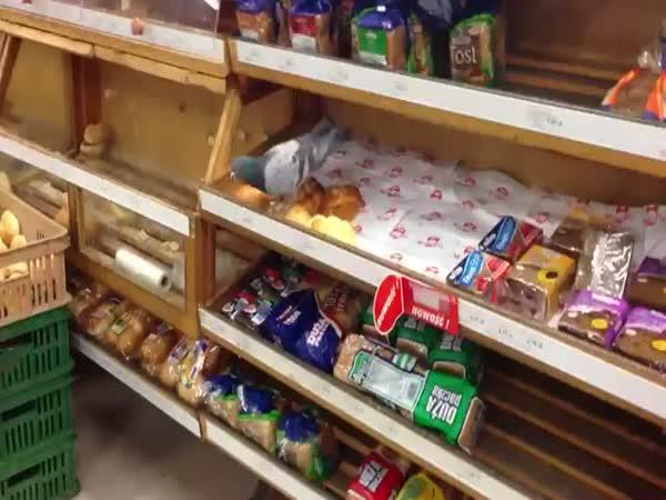 Překvapení v supermarketu