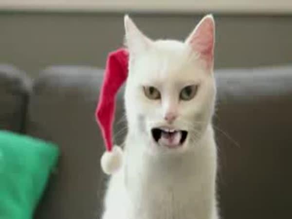 Jódlující kočička