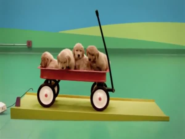 Skvělá reklama na psí žrádlo