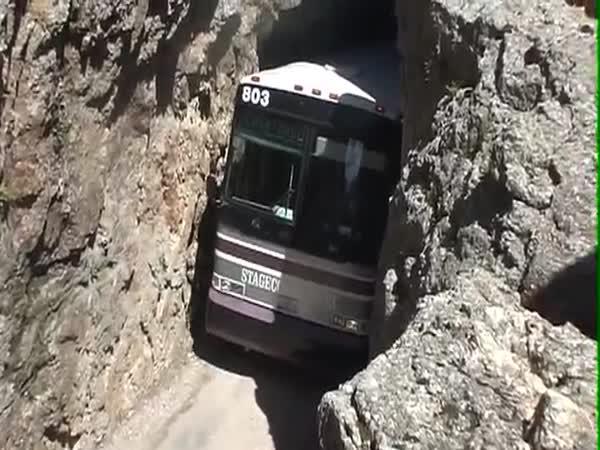 Autobusák profesionál