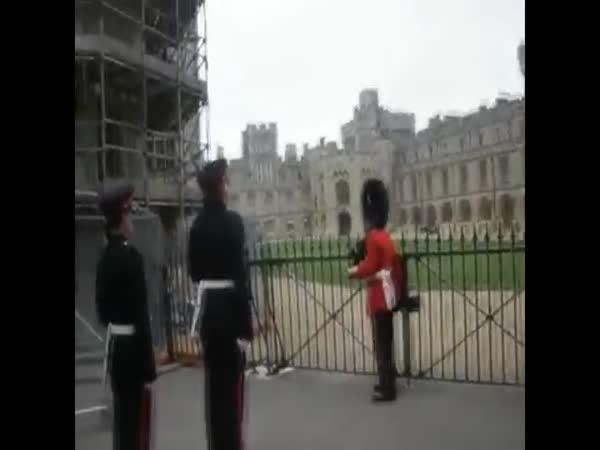 Kompilace - Nehody královské stráže