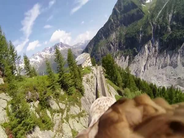 Svět pohledem orla