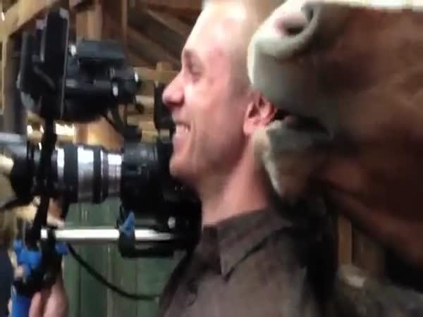 Kůň se zahryzl kameramanovi do ucha