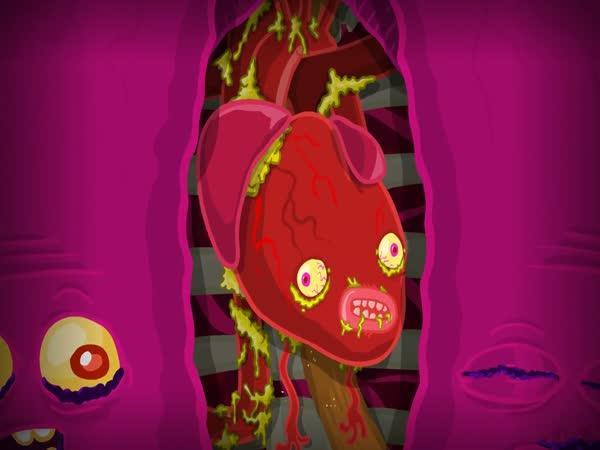 Příběh orgánů - Animace