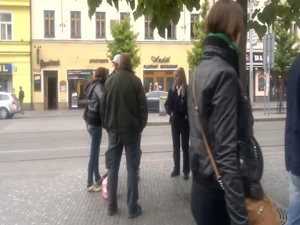 Česká republika - Napadení revizora