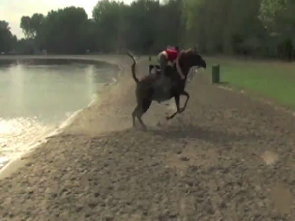 Největší blbci - koně a žokejové