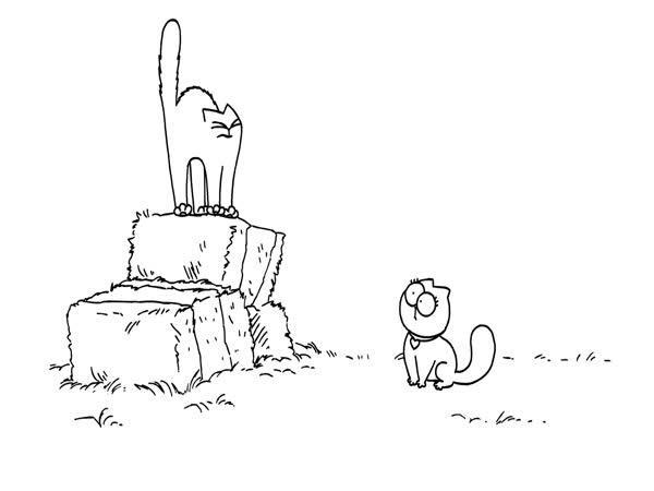 Kočičí námluvy - animace