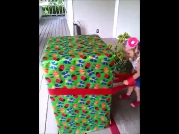 Netradiční dárek - Táta v krabici