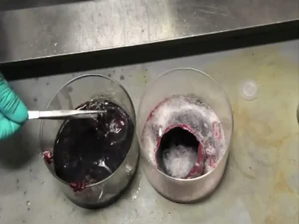 Pokus - žíraviny vs plechovka