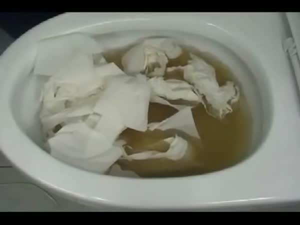 Jak na ucpaný záchod