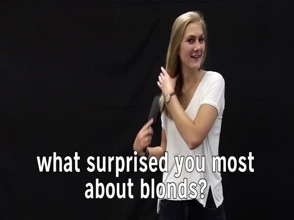 Senzační fakta o blonďatých lidech