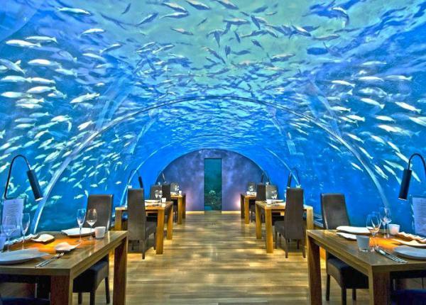 GALERIE - 30 nejúžasnějších restaurací